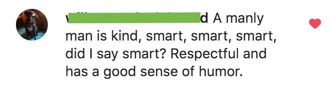Description of the ideal man