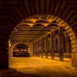 Alexandre III Bridge by Philip Phillou - City,  Street & Park  Night ( paris, city, steal, night, bridge, tunnel, alexandre, landscape, architecture )