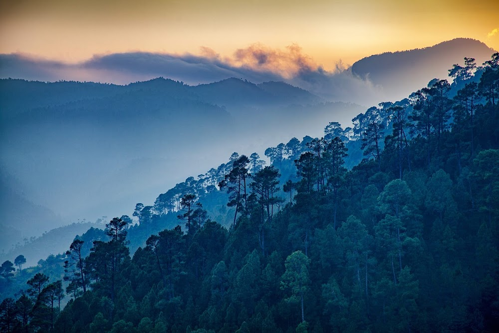 top-monsoon-getaways-Ranikhet_Uttarakhand
