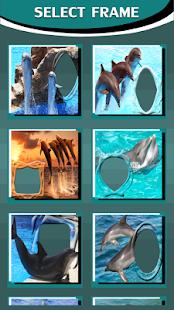 delfíni fotorámečky - náhled