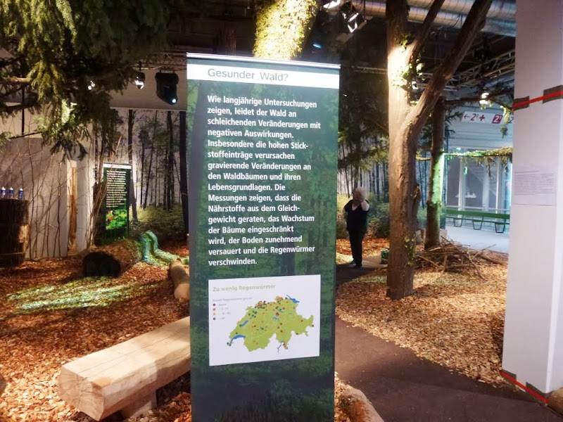 """Photo: Die Ausstellung """"gesunder Wald"""" von beider Basel"""