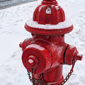 by Ted Anderson - Products & Objects Industrial Objects ( red, hdr, fire hydrant, snow, street )