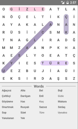 Words game - Find hidden words ss2