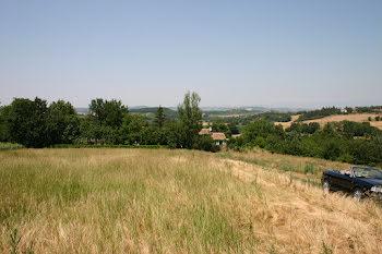 terrain à Bellegarde-du-Razès (11)