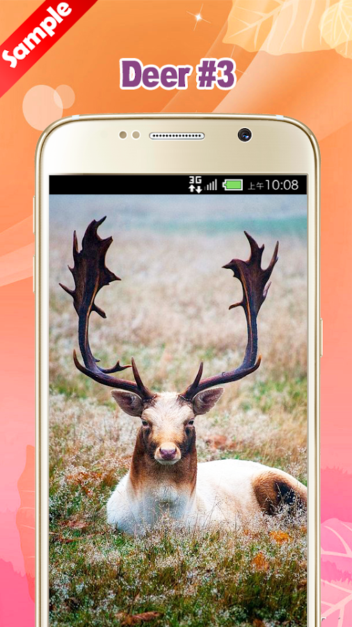 Deer wallpaper android apps on google play - Hunting wallpaper for android ...