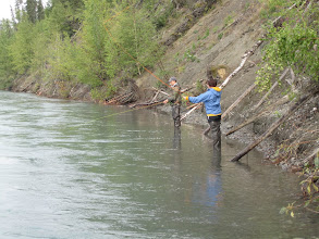 Photo: Fly fishing for Kenai sockeye salmon can be very effective.