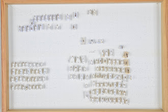 Photo: ZSM-HD-0001290 Cryptinae