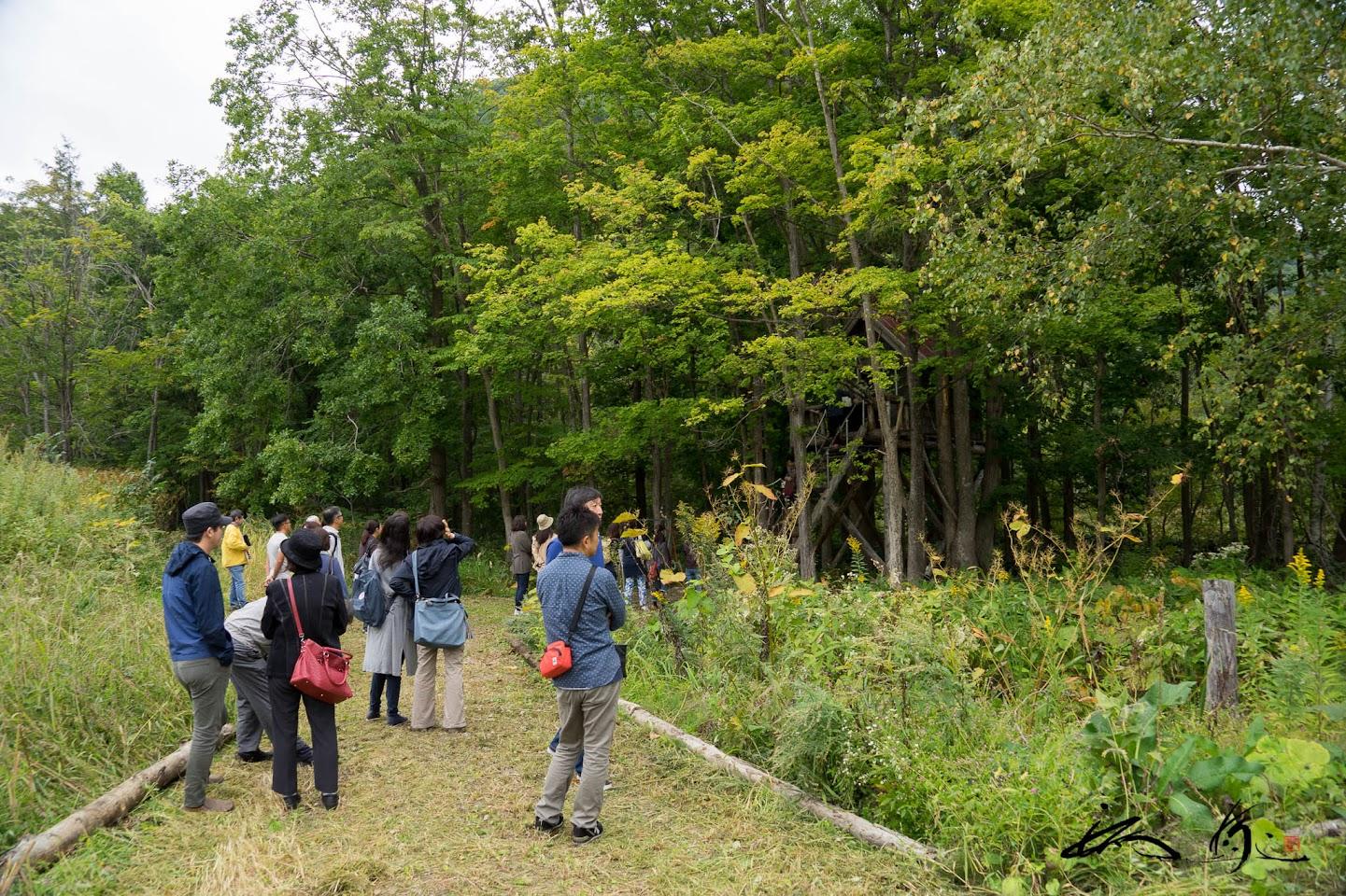 整備されたブドウ畑のまわりの遊歩道