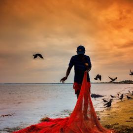 Fisherman by Sihina Lahiru - Landscapes Travel ( sunrise, ocean, sri lanka, sunshine, fish, fishing, fishermen, season, net, sun, fisherman, sea )