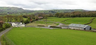 Mochdre farm for sale