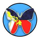 Philippine Lepidoptera