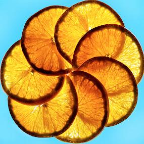 by Marianna Armata - Food & Drink Ingredients ( orange, ring, fruit, overlap, blue, food, translucent, slice, circle, marianna armata, transparent )
