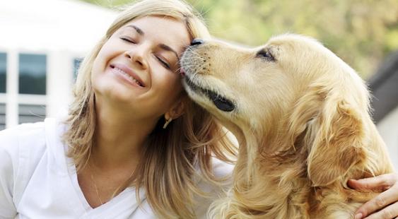 Dog Loves - náhled