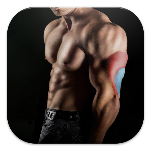 Bodybuilding & Fitness Workout 運動 App LOGO-硬是要APP
