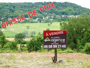 terrain à Chaulgnes (58)