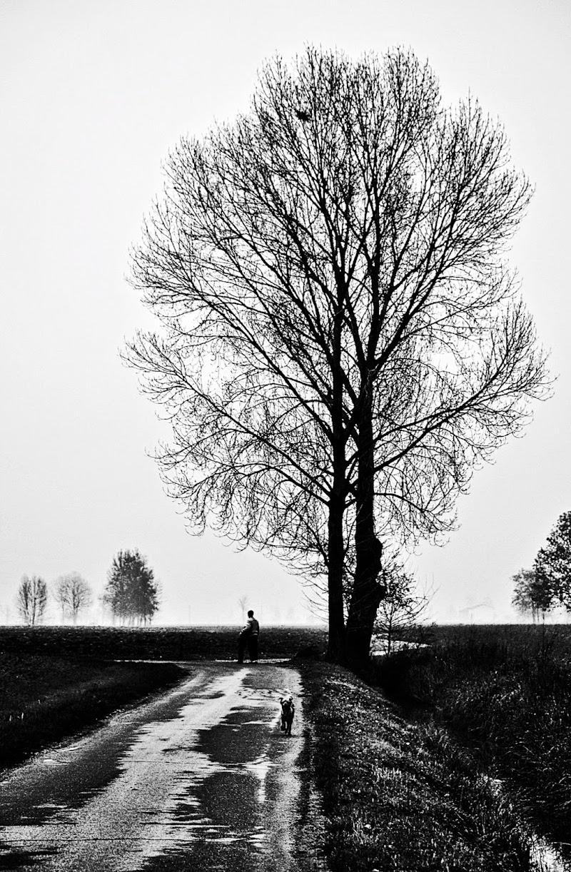 L'inverno nella Campagna Mantovana di Anna_Bollinger