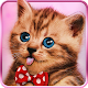 Sweet cats, live wallpaper Download on Windows