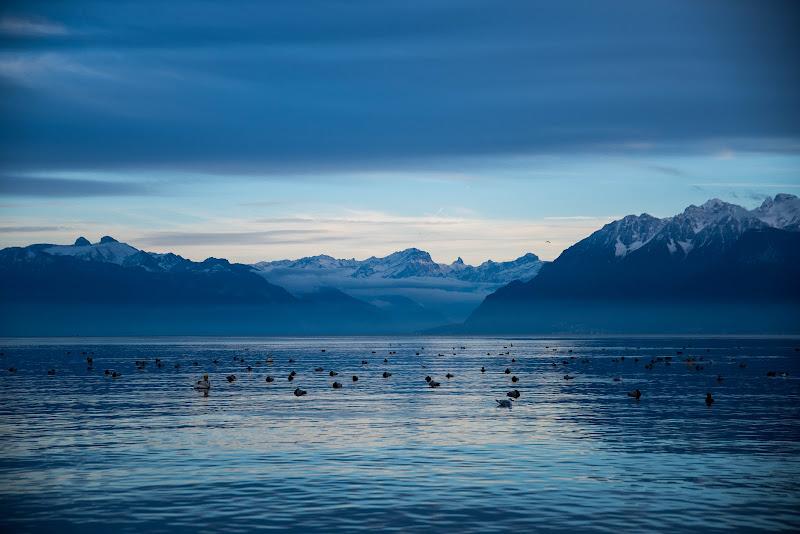 Lac Léman, Lausanne, novembre 2018. di Cristhian Raimondi