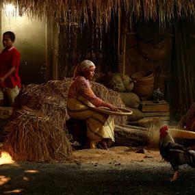 Morning Activity in my Village by Baron Danardono Wibowo - People Family