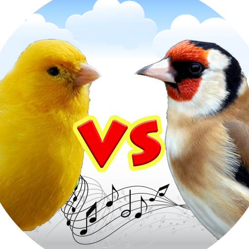 Canary vs g.. file APK for Gaming PC/PS3/PS4 Smart TV