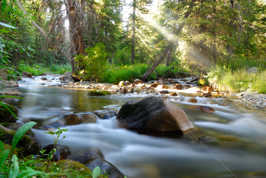The Picnic by Tory Taglio - Landscapes Waterscapes ( water, idaho, light rays, sun beams, tory taglio, sun valley, pwcsunbeams, river )