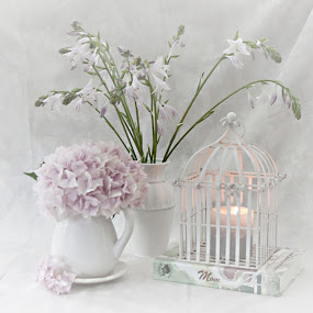 Mother Tell Me Your Memories by Sherry Hallemeier - Artistic Objects Still Life ( great-grandmothers, pitcheres, mothers, candlelight, still life, vases, grandmothers, hasta flowers, candle, stories, birdcage, memories, hasta, flowers, notes, hydrangeas,  )