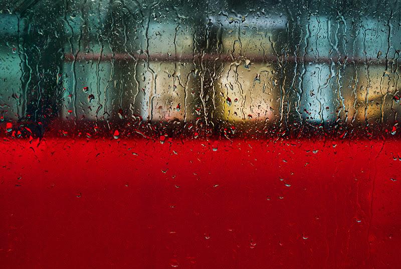 red tram di Zerosedici