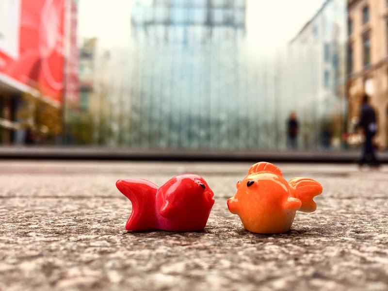 Goldfish in the city di Tita_86