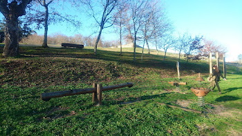 Parque do Castelo de Goian