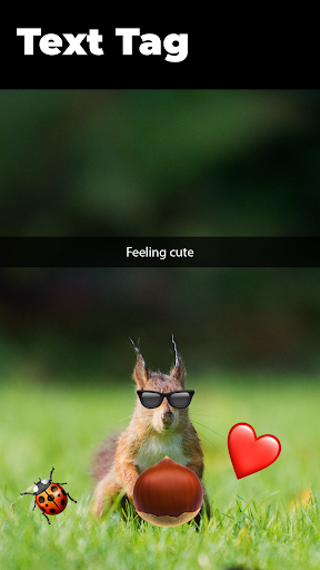 Image of Emoji Photo Sticker Maker Pro V4 New 4.3.1 2