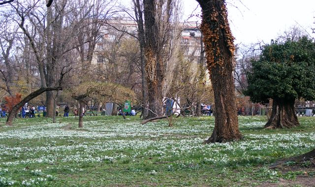 Good weather in Bucharest in March in parks