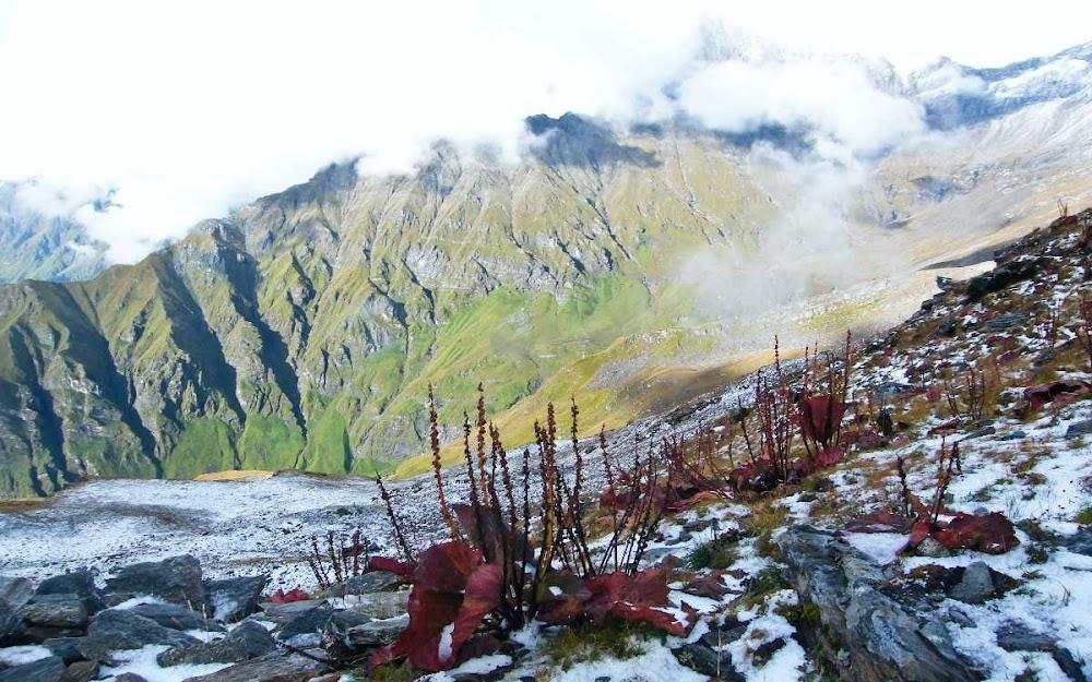 top-10-biosphere-reserves-india-Nanda_Devi_National_Park-Image