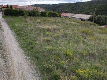 terrain à Sournia (66)