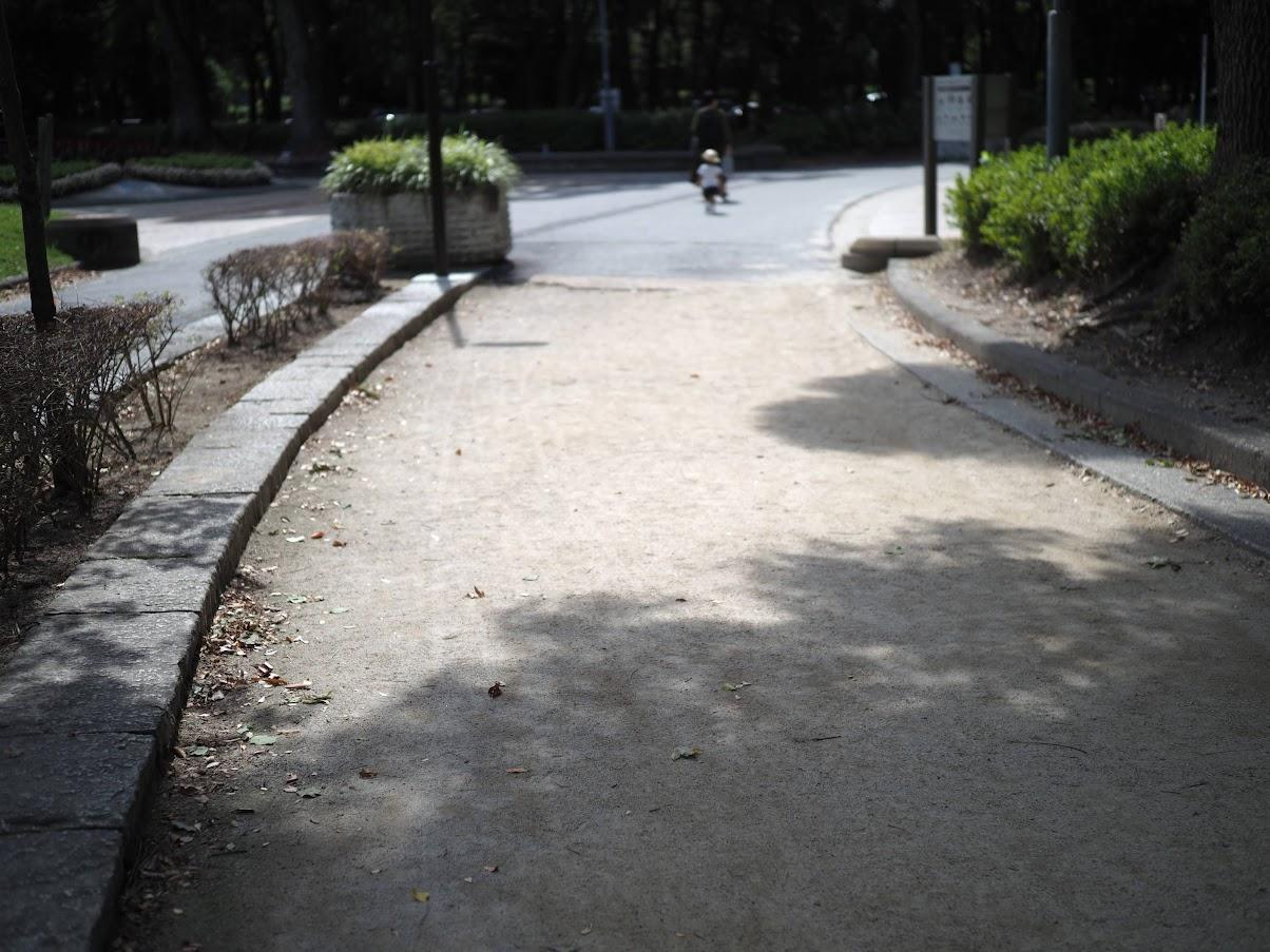 公園を歩く人