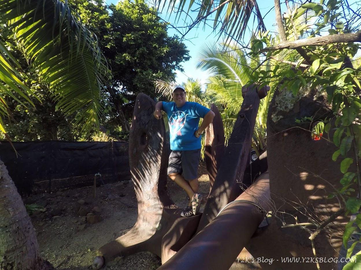 Le vecchie ancore delle navi americane della seconda guerra mondiale - Bora Bora