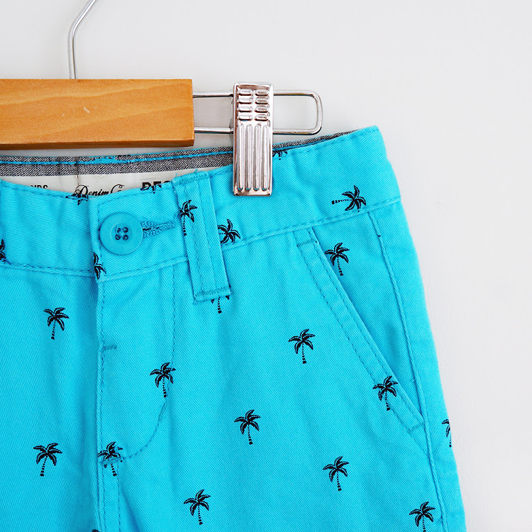Hawaii Shorts