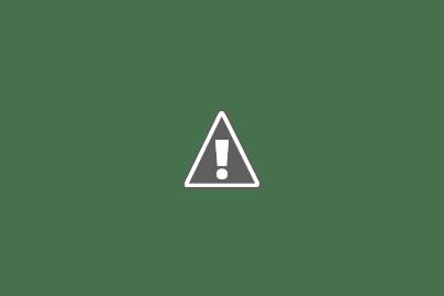 LA ESCUELA BERNARDINO RIVADAVIA FESTEJÓ SUS 105 AÑOS DE VIDA INSTITUCIONAL.