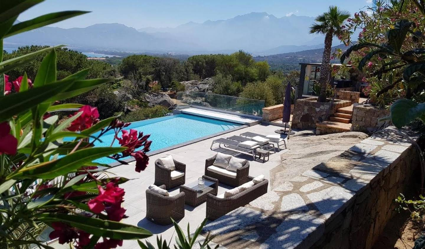 House with pool and terrace Calvi