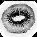 KiwiDict Offline Dictionary icon