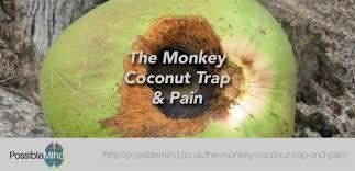The Monkey Coconut Trap and Pain - The Possible Mind