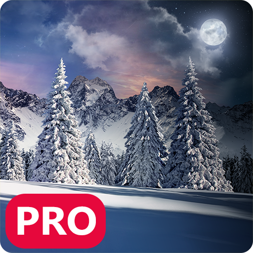 Winter Snowfall Day Night Realistic PRO Christmas