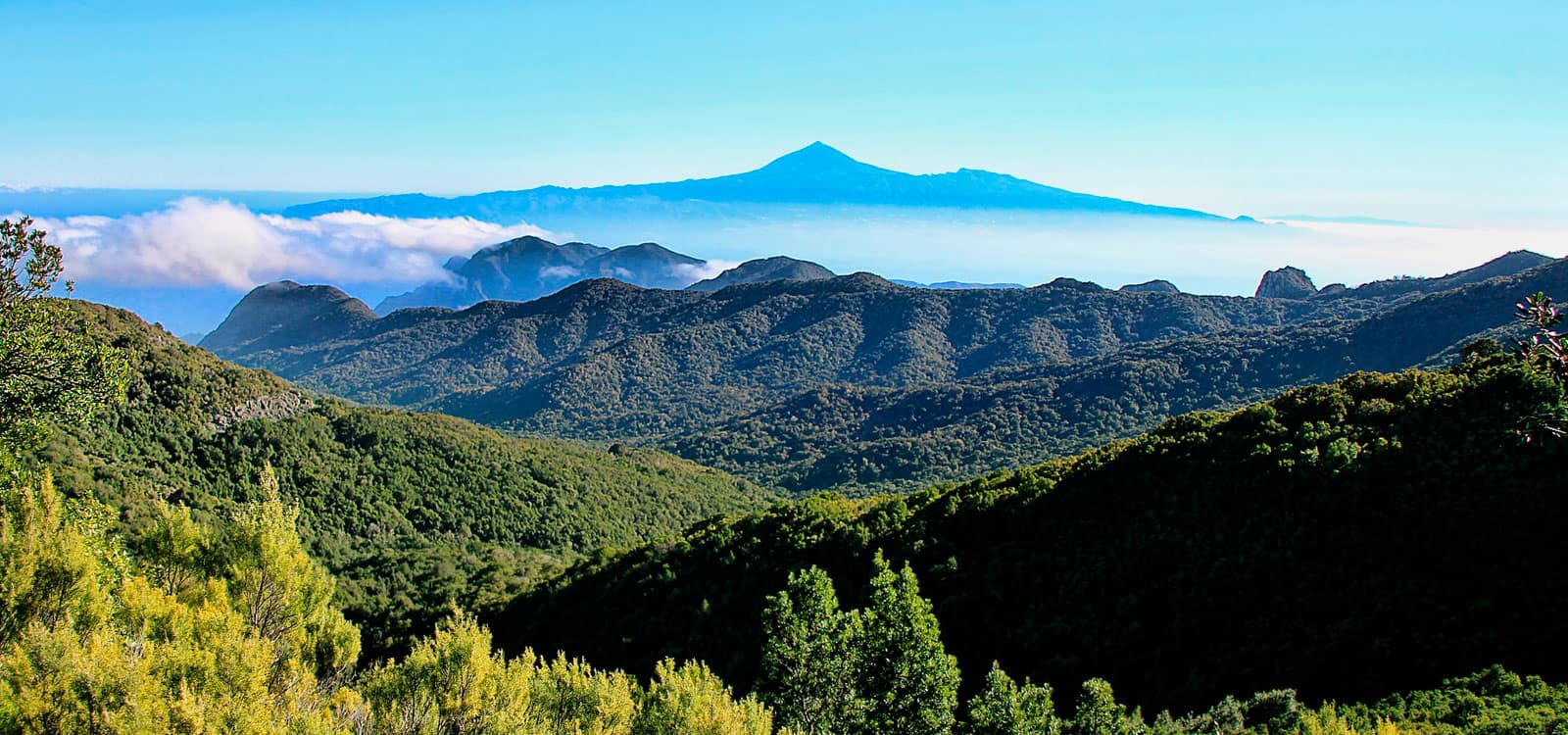 Hotel Laurisilva | La Gomera | Web Oficial