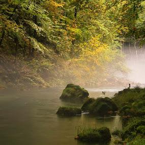 Morning .... by Gordana Kvajo - Nature Up Close Water