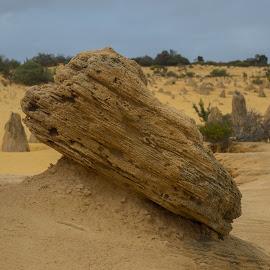 Pinnacle Desert WA by Aldi Daldi - Landscapes Deserts