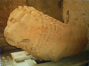 Photo: Fig. 6. Leone, peperino. Civita Castellana, Forte Sangallo.
