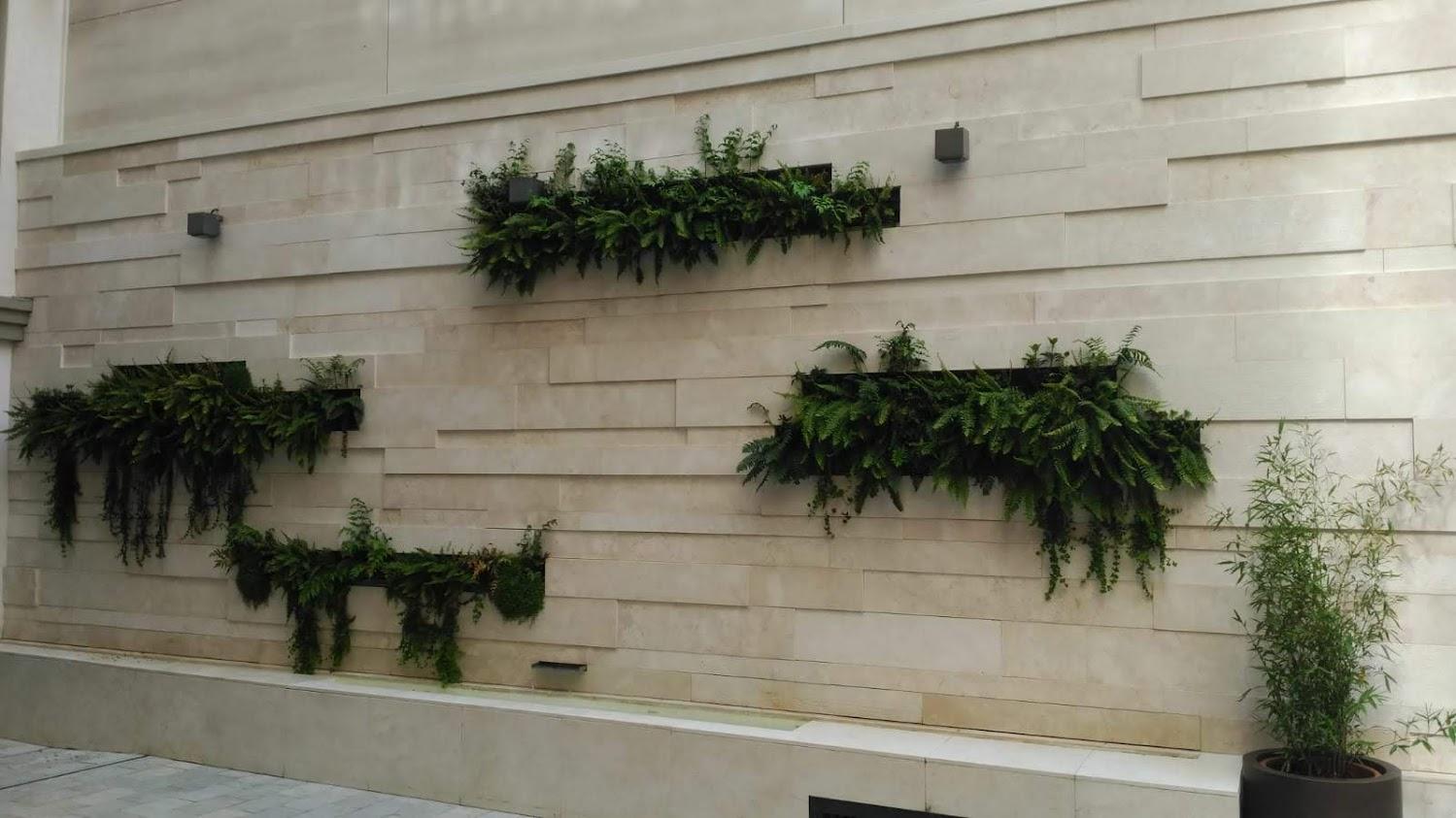 Resultado del jardín vertical en Granada