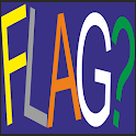 Flag Quiz icon