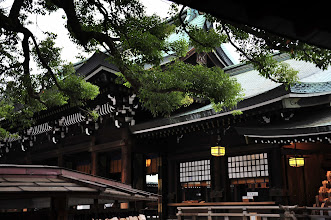 Photo: Tokyo - Temple de Meiji Jingû - chaque parc tokyoïte abrite un élégant temple. Certains sont payants.