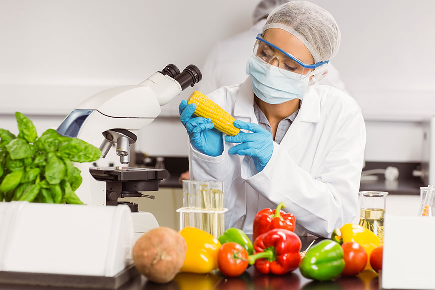The Importance of Food Traceability in The Agro Industry