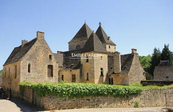 château à Saint-Geniès (24)